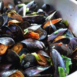 'Zeeuwse mosselen in Saint-Tropez' | Brasserie Zuiderzoet